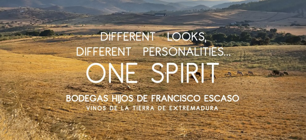 Differents Looks, differents personalities... One Spirit